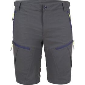 Icepeak Ellis Shorts Men grey